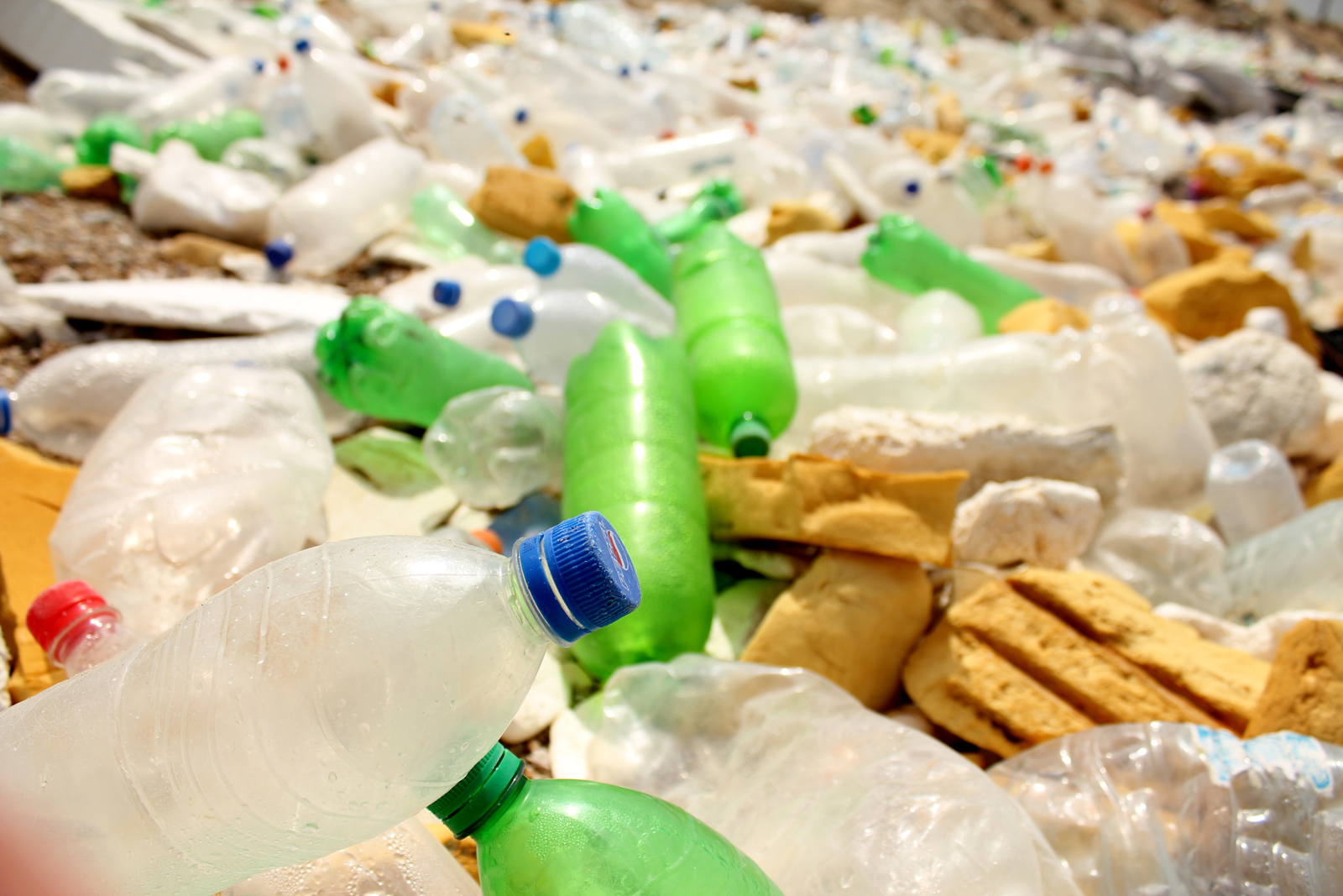 Waste-Plastic-Bottles